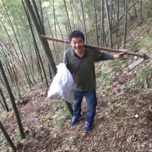 滄海一粟木木
